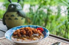 Japans Fried Chicken Curry Arkivbild