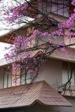 Japans huis stock afbeeldingen