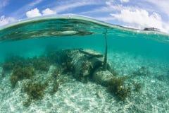 Japans Nul Vliegtuig Onderwater in Palau stock foto