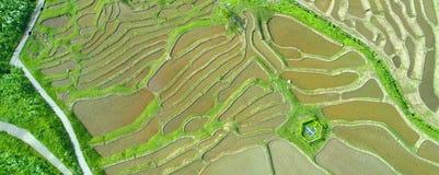 Japans platteland royalty-vrije stock afbeeldingen
