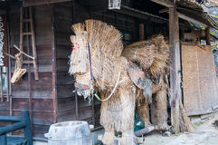 Japans stropaard Stock Foto
