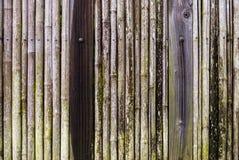 Japanse bamboeomheining Stock Foto's