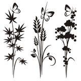 Japanse bloemenontwerpreeks Royalty-vrije Stock Foto