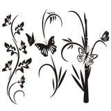 Japanse bloemenontwerpreeks Stock Afbeelding