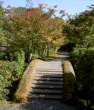 Japanse brug en schaduwen stock fotografie