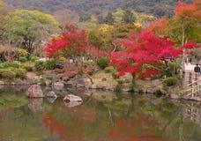Japanse dalingsvijver Stock Foto's