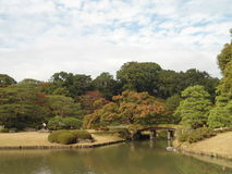 Japanse de herfstkleuren Royalty-vrije Stock Afbeelding