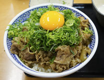 Japanse Gekookte vleesrijst met ui Stock Foto's