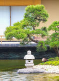Japanse groene tuin Royalty-vrije Stock Afbeeldingen