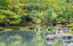 Japanse groene tuin Stock Foto