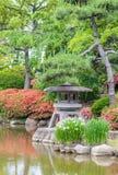 Japanse groene tuin Stock Afbeelding
