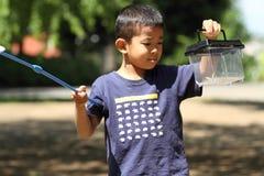 Japanse jongen die insect verzamelen royalty-vrije stock afbeeldingen