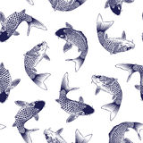 Japanse Karper stock illustratie