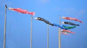 Japanse karper-vorm vlaggen Royalty-vrije Stock Foto