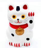 Japanse kat Stock Foto