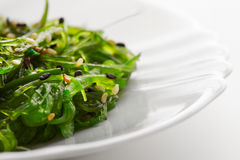 Japanse keuken, gezond organisch overzees voedsel Zeewiersalade Stock Foto