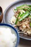 Japanse Keuken SÅmen chanpurÅ ? Stock Afbeeldingen
