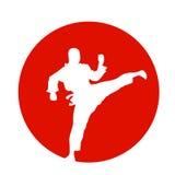 Japanse kungfuvechter royalty-vrije illustratie