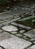 Japanse openluchttuinweg met de groene struiken en achtergrond van de steenbevloering stock foto