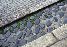 Japanse openluchttuinweg met de groene struiken en achtergrond van de steenbevloering royalty-vrije stock afbeelding
