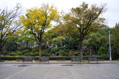 Japanse park en tuin Stock Foto's