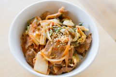 Japanse rijst met Koreaanse kimchi royalty-vrije stock foto