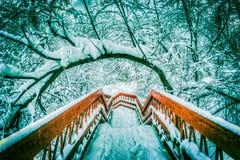 Japanse rode brug met sneeuw in de vijver tijdens de winter stock afbeelding