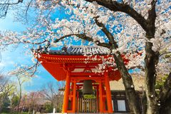 Japanse tempel bij de lente Royalty-vrije Stock Fotografie
