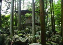 Japanse tempel in een bos Royalty-vrije Stock Foto's