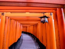 Japanse Tempellamp en Poorten stock foto's
