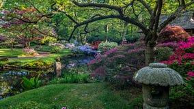 Japanse traditionele tuin met vijver en heldere bloemen Royalty-vrije Stock Afbeelding