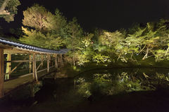 Japanse tuin bij nacht Royalty-vrije Stock Foto