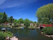 Japanse tuin in Bloomington met vijver Royalty-vrije Stock Afbeelding