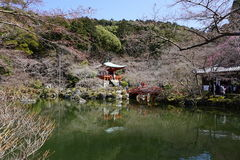 Japanse tuin in Daigoji-tempel, Kyoto Stock Afbeelding