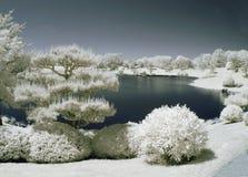 Japanse Tuin door het Water Stock Fotografie