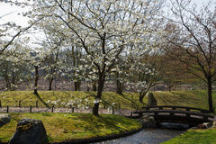 Japanse tuin, Hasselt, België Royalty-vrije Stock Foto