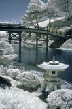 Japanse Tuin in Infrared Royalty-vrije Stock Afbeelding