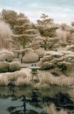 Japanse Tuin in Infrared Stock Fotografie