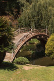 Japanse tuin met een koivijver Royalty-vrije Stock Afbeelding
