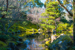 Japanse tuin met mooi meer royalty-vrije stock foto's