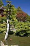 Japanse tuin met vijver en Pagode Stock Afbeeldingen