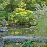 Japanse tuin met vijver en steenbrug Stock Afbeelding
