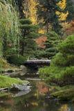Japanse Tuin tijdens Autumn Season Stock Afbeeldingen