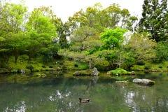 Japanse Tuin van Overpeinzing in Hamilton Gardens Stock Foto's