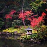 Japanse Tuin Zen Stock Foto