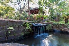 Japanse tuinen bij de stadsdierentuin Fabio Barreto van Ribeirão Preto Sao Stock Afbeeldingen