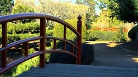 Japanse tuinen in Toowoomba stock footage
