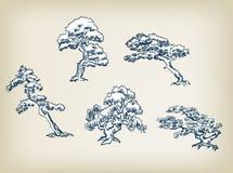 Japanse vastgestelde het ontwerpelementen van de pijnboom vectorillustratie stock illustratie