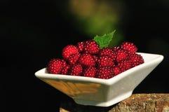Japanse Wineberries Royalty-vrije Stock Afbeeldingen