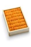 Japanse zeeëgel Stock Afbeeldingen